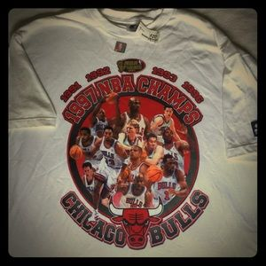 Vtg NBA Chicago Bulls Champions Shirt L New NWT
